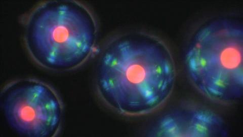 Nepadělatelné optické struktury na obalech