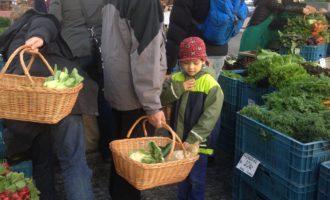 Česko má první částečně bezobalový farmářský trh