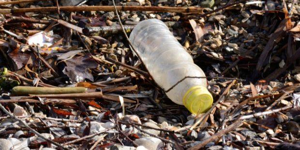 Kolik PET lahví leží ve volné přírodě? Zjistíme v sobotu.