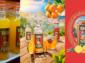 Kofola uvádí novou vlastní značku prémiových limonád Targa Florio s poutavým designem a provedením obalu