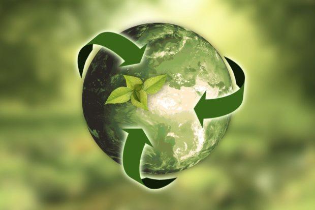 Ekologie nejen na Den Země. Češi stále více preferují udržitelnost při nákupech